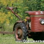 1965, DZIK-2, 372 cc, 8,5 KM 33