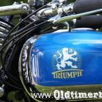 1936, Triumph TM 500, 496 ccm, 13 HP 030